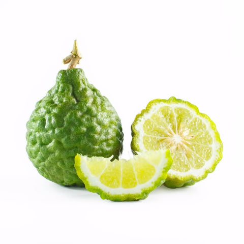 NoblePure™ Bergamot Essential Oil FCF - Noble Roots