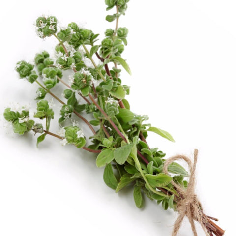 NoblePure™ Marjoram Essential  Oil - Noble Roots