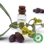 Jojoba Oil Colorless (Certified Organic) - Noble Roots