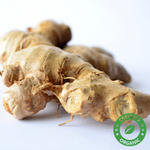 Ginger Oil (Certified Organic) - Noble Roots