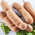 NobleEssence™ Tamarind Extract - Noble Roots