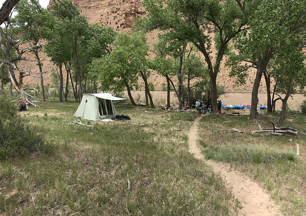 A remote canyon, old cottonwoods, sandy beaches, and a Springbar Tent- welcome to paradise.