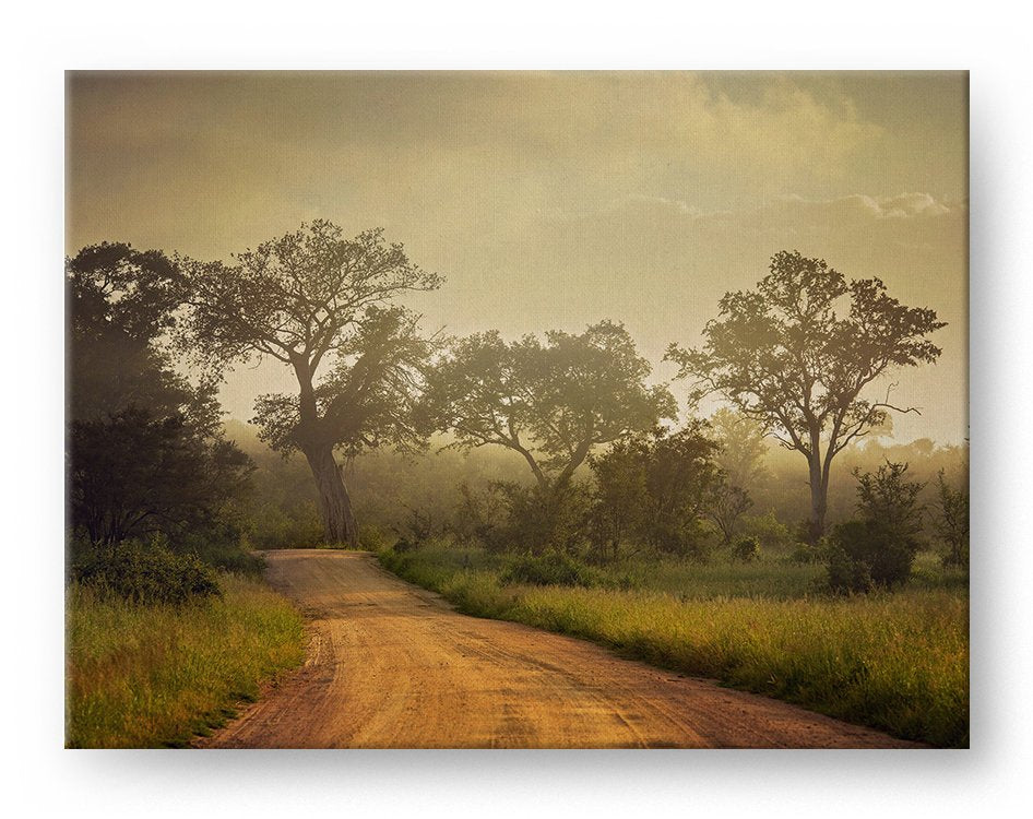 South Africa Safari Road Sunrise Gallery Mounted Canvas Landscape Photo Print