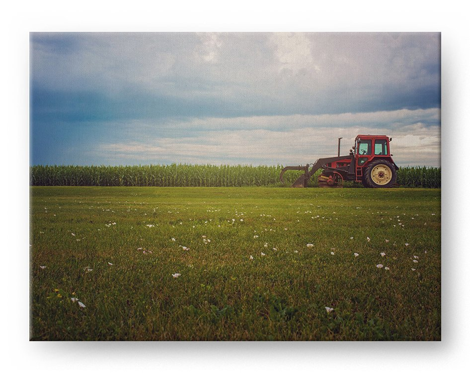 Old Tractor Gallery Mounted Canvas Landscape Photo Print