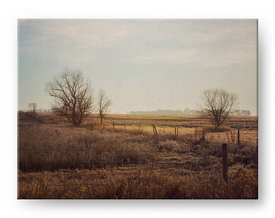 Country Landscape Gallery Mounted Canvas Landscape Photo Print - Whimsical Wild Artwork