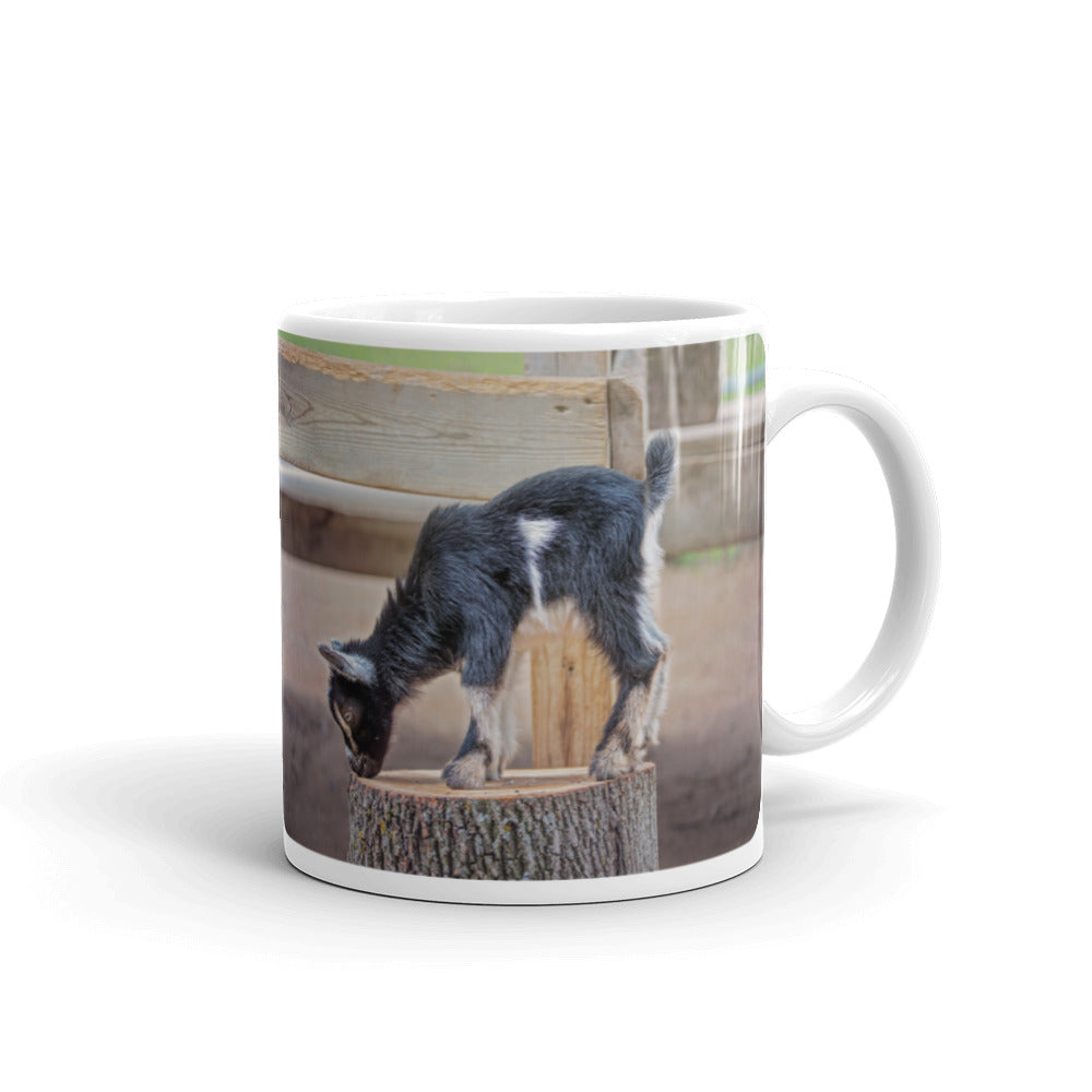 Young Goat Photo Coffee Mug