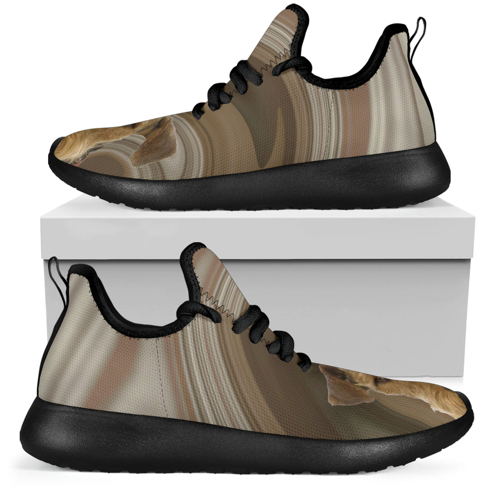 Terrier brown Sneakers - JaZazzy