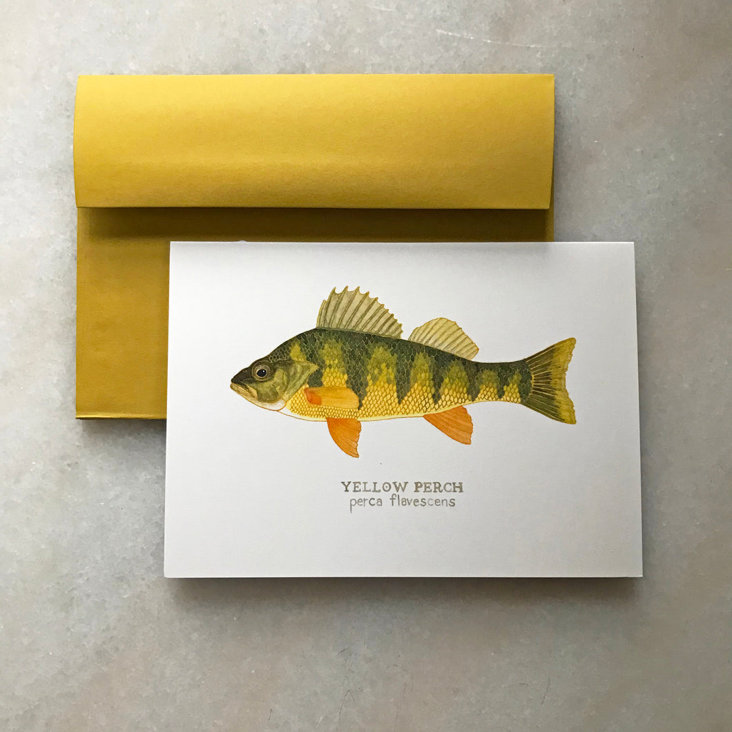 Warmwater Fish Greeting Cards