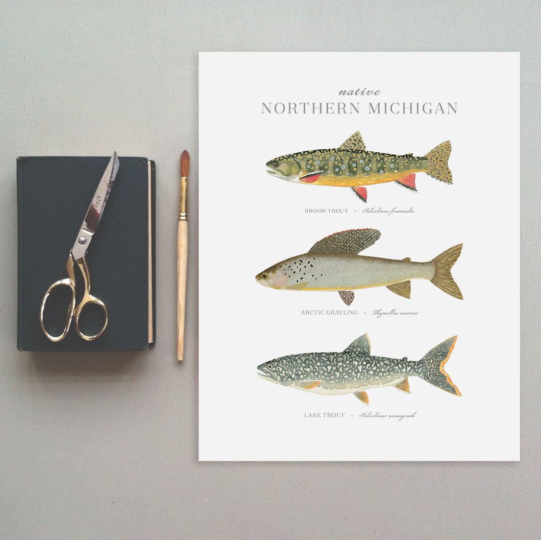 Native Northern Michigan Fish Print