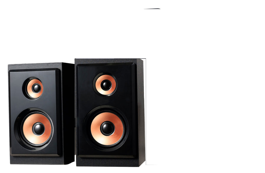 Single Speakers for SPFYM317