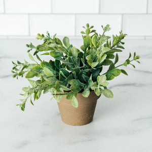 "6"" Potted Faux Oregano"
