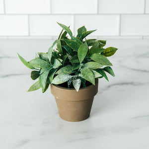 "6"" Potted Faux Sage"