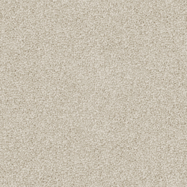 Poly25 Polyester Carpet Amaretti