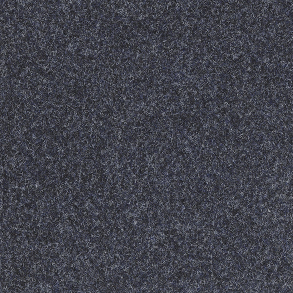Adventure Outdoor and Indoor Carpet Blue Black