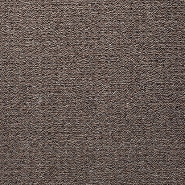Blockbuster Plus Carpet Brindle PP by Beaulieu Carpets
