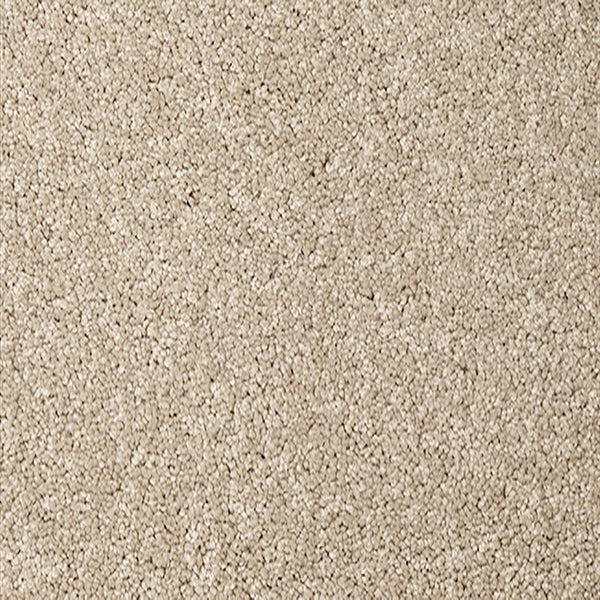 El Camino Carpet Torte SDN by Beaulieu Carpets