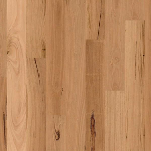 Timber Flooring Blackbutt 1-Strip by Quick Step