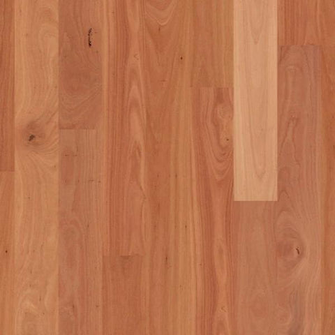 Quict Step Natural Timber Flooring in Sydney Blue Gum. Timber flooring by Homesoul Flooring