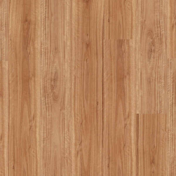 VP50 Vinyl Plank Flooring Blackbutt