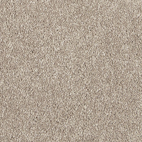 Polyester Carpets Homesoul Flooring