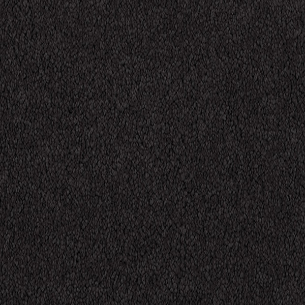 Penny Lane Carpet Onyx 7790 by Godfrey Hirst