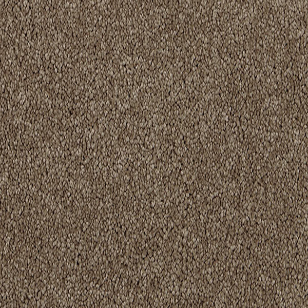 Penny Lane Carpet Riverstone 5545 by Godfrey Hirst