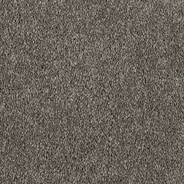 Penny Lane Carpet Suede 7730 by Godfrey Hirst