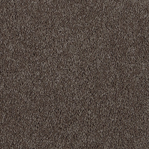 Penny Lane Carpet Vintage 5565 by Godfrey Hirst