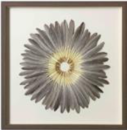 Brown Feather - Wall Art - Rosie's Gifts and Homeware - Gift Shop NZ