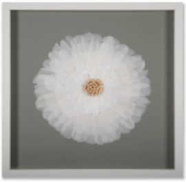 White Feather - Wall Art - Rosie's Gifts and Homeware - Gift Shop NZ