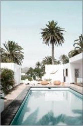palm springs canvas- art- rosies gifts nz