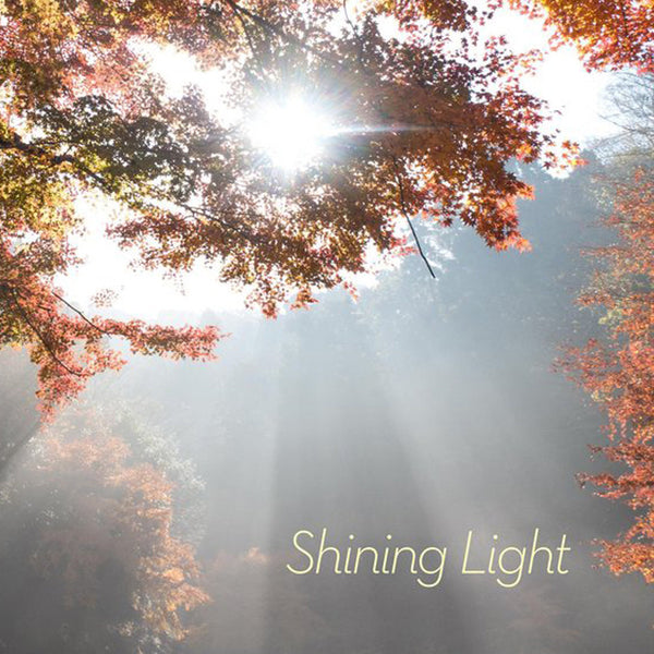 Shining Light Collection