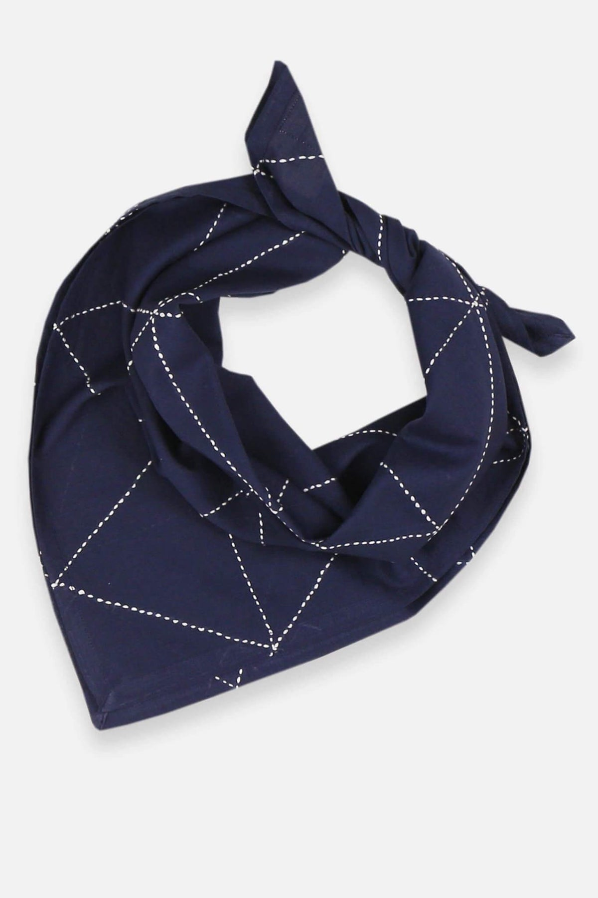 Anchal Project Graph Bandana