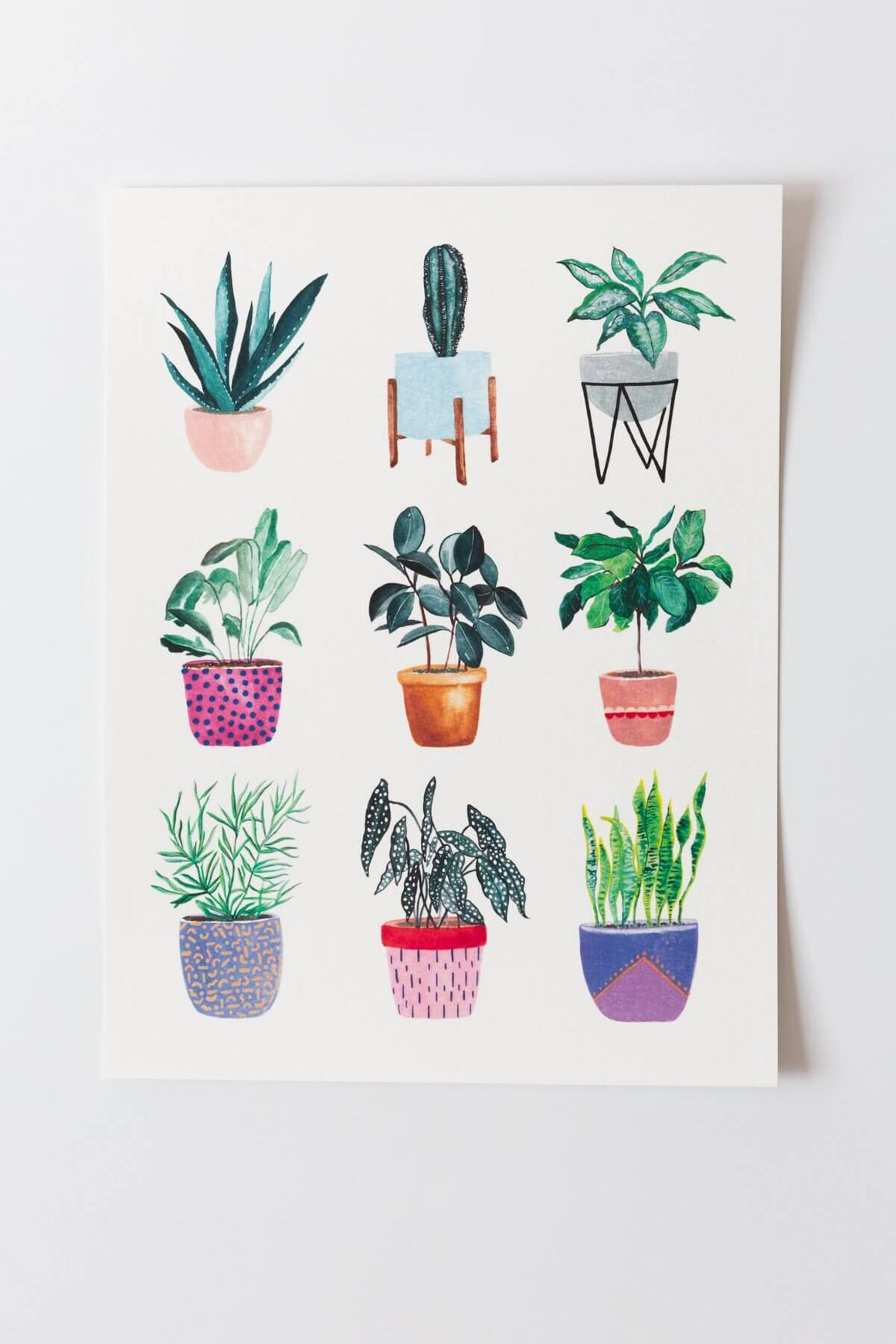 Planters Collection Art Print