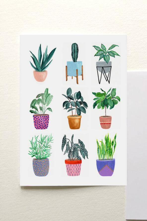 Planters Collection Card