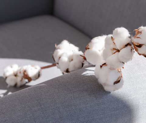 A Picture of Cotton used as a upholstery fabric in a home as a home decor accessory for a blog post on leelathestore.com