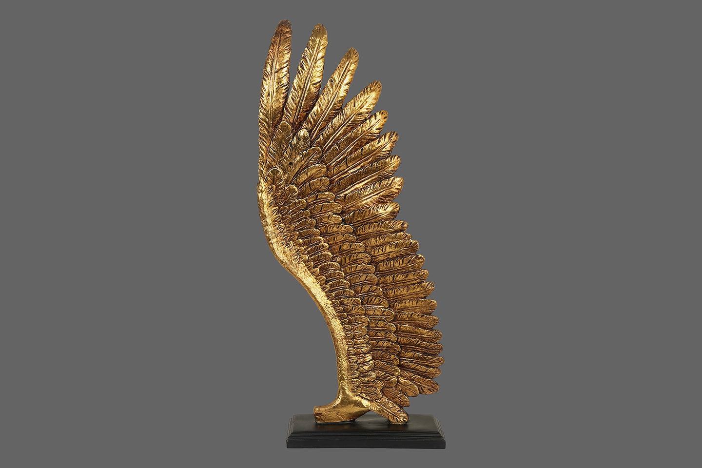 Eagle Wing Showpiece