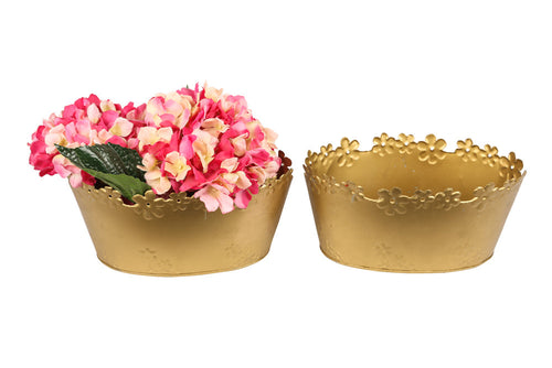 Brass planters with a gold finish to make the plants look more radiant. (like they need it)