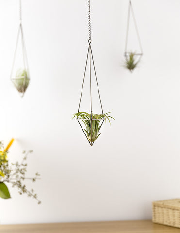 Geometric Airplant Vase