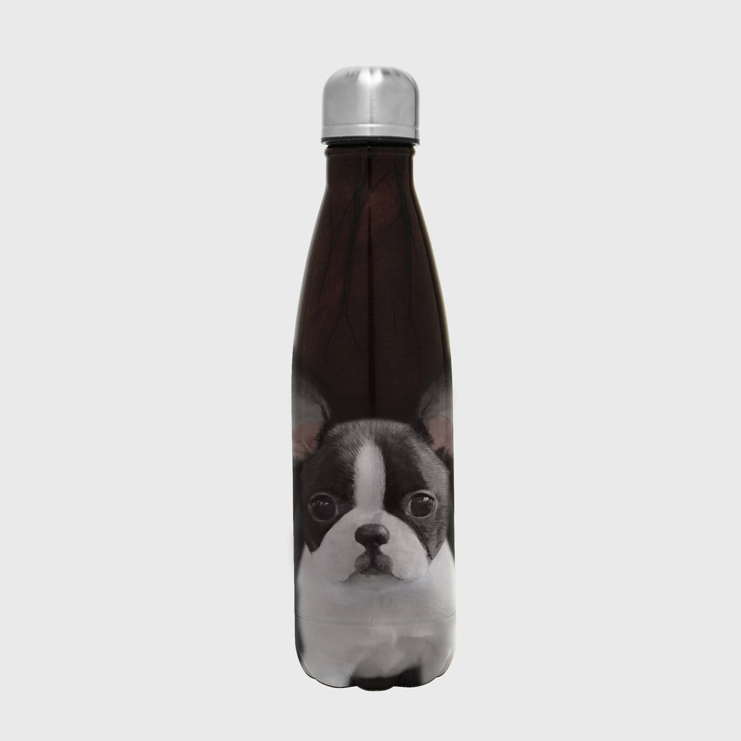 Into The Wild Bottle - Dog