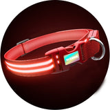 Ruby Red K9 Karma Light Up LED Dog Collar