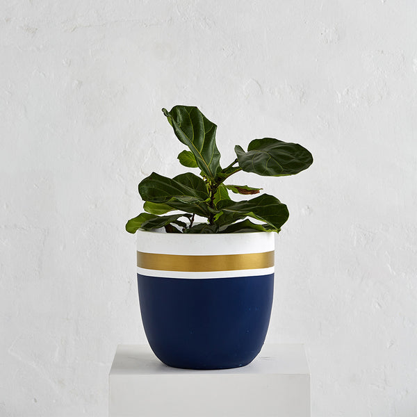 Planter Pots - Light Weight