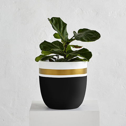 Royal Planter Pot