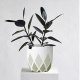 Harlequin Planter Pot