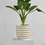 Pinstripe Planter Pot