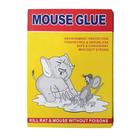 products/1203BigMouseTrapGluePad.jpg