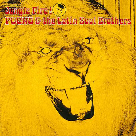 Pucho & Latin Soul Brothe - Jungle Fire