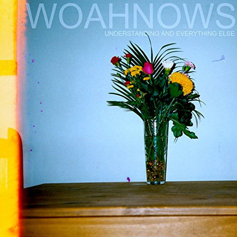 Woahnows - Understanding And..