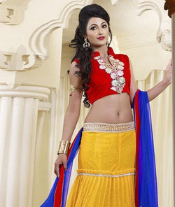 Net Lehenga with Choli and Lining