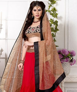 Soft Net Lehenga Set